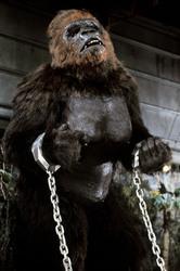 КИНГ КОНГ ЖИВ ! / King Kong lives ! (1986) Линда Гамильтон 25da181376282736