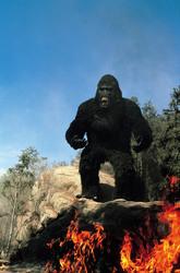 КИНГ КОНГ ЖИВ ! / King Kong lives ! (1986) Линда Гамильтон F877651376283722