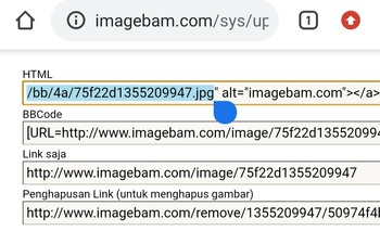 thumbs2.imagebam.com/35/31/bb/9481f51355211409.jpg