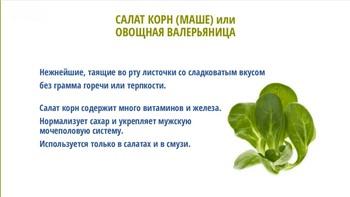 Зеленые листовые овощи. Проростки и микрозелень (2018) Видеокурс