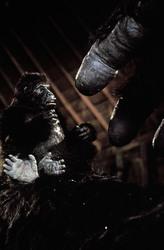 КИНГ КОНГ ЖИВ ! / King Kong lives ! (1986) Линда Гамильтон E769fc1376284291