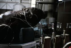 КИНГ КОНГ ЖИВ ! / King Kong lives ! (1986) Линда Гамильтон 7bdf981376283551