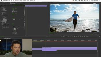 Эффекты Adobe Premiere Pro - Гибридный курс (2020) Видеокурс