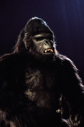 КИНГ КОНГ ЖИВ ! / King Kong lives ! (1986) Линда Гамильтон C074ff1376284093