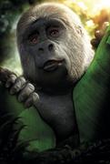 Тарзан / Tarzan (2013) 1ba7751347737144