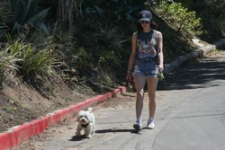 Lucy Hale Out Walking Her Dog in Beverly Hills - 4/24/20