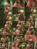 Kerry Martin - Kerrys Garden Of Boobs (2020 ScoreHD.com PornMegaLoad.com) [FullHD   1080p  1.04 Gb]