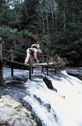 КИНГ КОНГ ЖИВ ! / King Kong lives ! (1986) Линда Гамильтон 0852011376283794