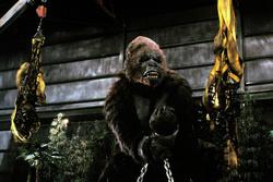 КИНГ КОНГ ЖИВ ! / King Kong lives ! (1986) Линда Гамильтон E1b13e1376282813