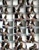 Marcelin Abadir - Anal Hard fuck learn to cook (2020 PornHub.com) [HD   720p  674.95 Mb]