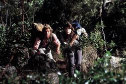 КИНГ КОНГ ЖИВ ! / King Kong lives ! (1986) Линда Гамильтон B51b7b1376282749