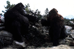 КИНГ КОНГ ЖИВ ! / King Kong lives ! (1986) Линда Гамильтон Dc0c521376284030