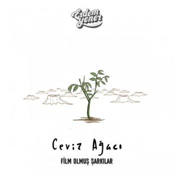 Erdem Yener - Ceviz Ağacı (2019) Single Albüm İndir