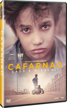 Cafarnao (2018) DVD9