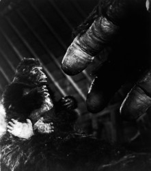 КИНГ КОНГ ЖИВ ! / King Kong lives ! (1986) Линда Гамильтон E692a71376284384