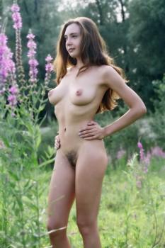 https://thumbs2.imagebam.com/9d/e0/d9/906c7a1328573268.jpg