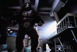 КИНГ КОНГ ЖИВ ! / King Kong lives ! (1986) Линда Гамильтон 2ed7091376284025