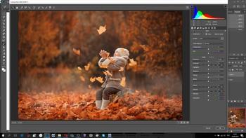 Осеннее изобилие + 9 Бонусных видеоурока по обработке фотографии (2019) Видеокурс