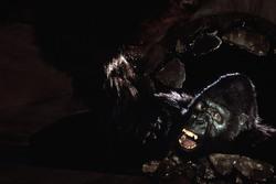 КИНГ КОНГ ЖИВ ! / King Kong lives ! (1986) Линда Гамильтон Cabbab1376284281