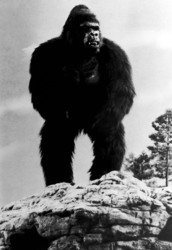 КИНГ КОНГ ЖИВ ! / King Kong lives ! (1986) Линда Гамильтон Ce17381376284446