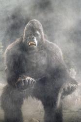 КИНГ КОНГ ЖИВ ! / King Kong lives ! (1986) Линда Гамильтон B6aa451376283646