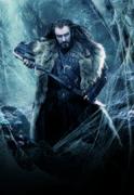 Хоббит Пустошь Смауга / The Hobbit The Desolation of Smaug (2013) B1bf871356376306