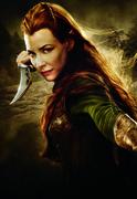 Хоббит Пустошь Смауга / The Hobbit The Desolation of Smaug (2013) Fb25151356376314
