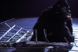 КИНГ КОНГ ЖИВ ! / King Kong lives ! (1986) Линда Гамильтон Fae1271376284283