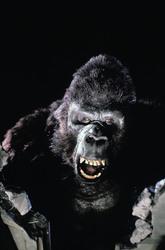 КИНГ КОНГ ЖИВ ! / King Kong lives ! (1986) Линда Гамильтон C713c91376283947