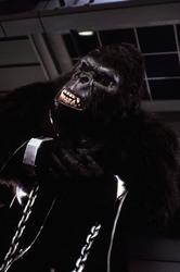 КИНГ КОНГ ЖИВ ! / King Kong lives ! (1986) Линда Гамильтон 3c8d4b1376284245