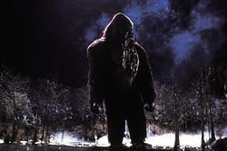 КИНГ КОНГ ЖИВ ! / King Kong lives ! (1986) Линда Гамильтон 0c04ed1376284133