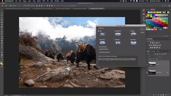 Инструменты дизайнера: Adobe Photoshop СС (2019) Видеокурс