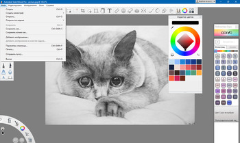 Autodesk SketchBook Pro 2020.1 8.6.6 (MULTI/RUS/ENG)