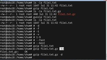 Линукс шаг за шагом: Изучаем Linux и командную строку (2019) Видеокурс